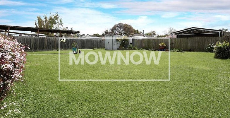 lawn-mowing-epping-melbourne-victoria-gardening-services-lawn-mowing-services-5
