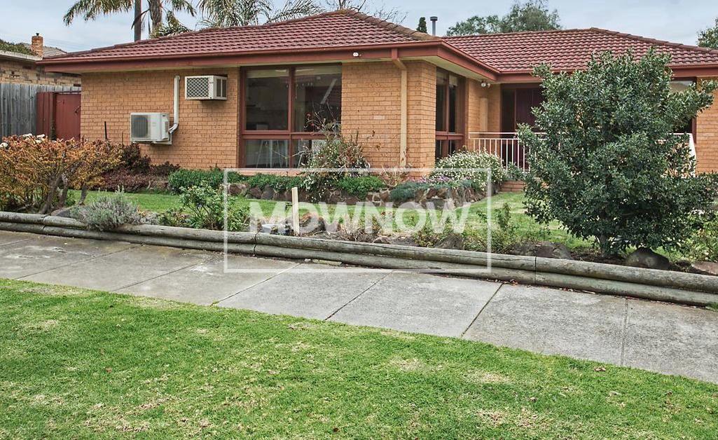 lawn-mowing-hampton-melbourne-victoria-gardening-services-lawn-mowing-services-7