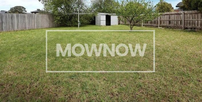 lawn-mowing-lynbrook-melbourne-victoria-gardening-services-lawn-mowing-services-2