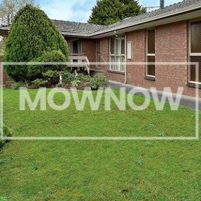 Lawn Mowing Service | MOW NOW | Free Lawn Mowing Quote