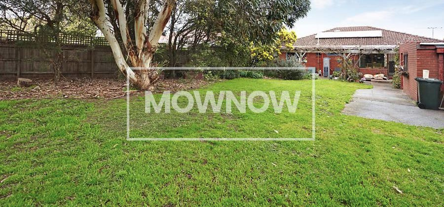 Lawn Mowing Quote and Grass Cutting Services