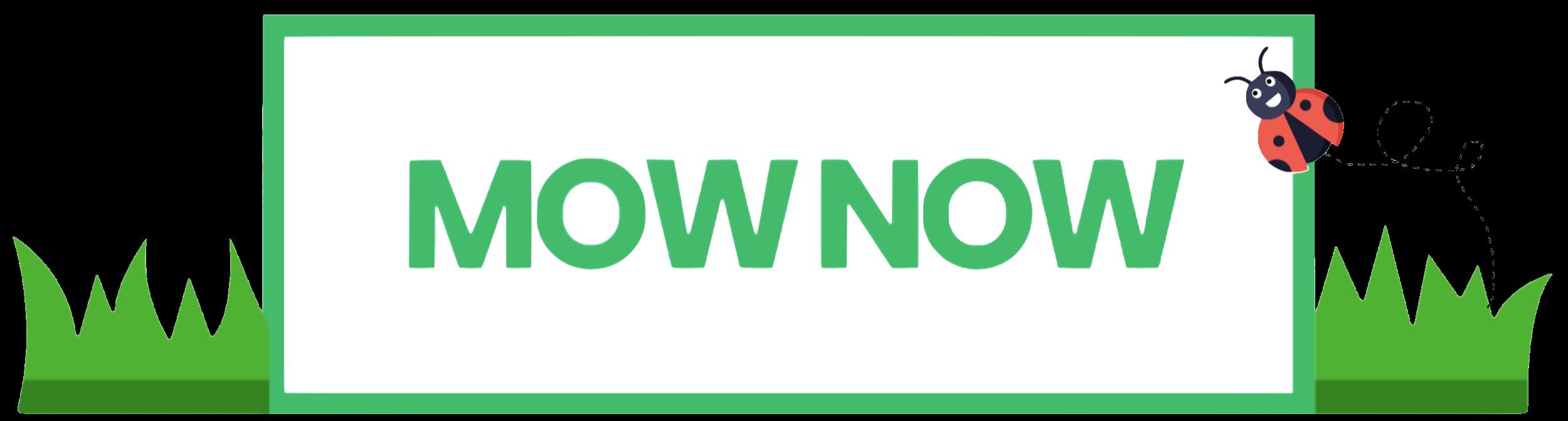 MOW NOW