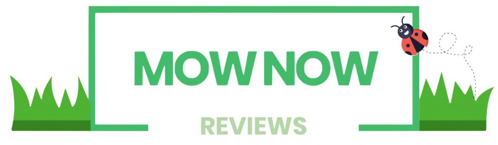 mow now reviews