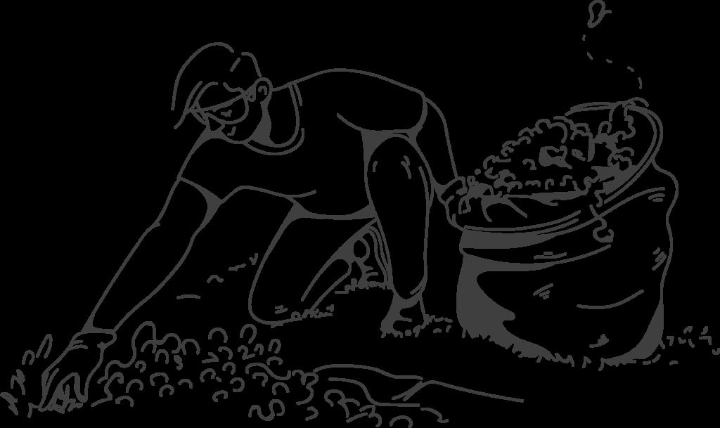 weeding services