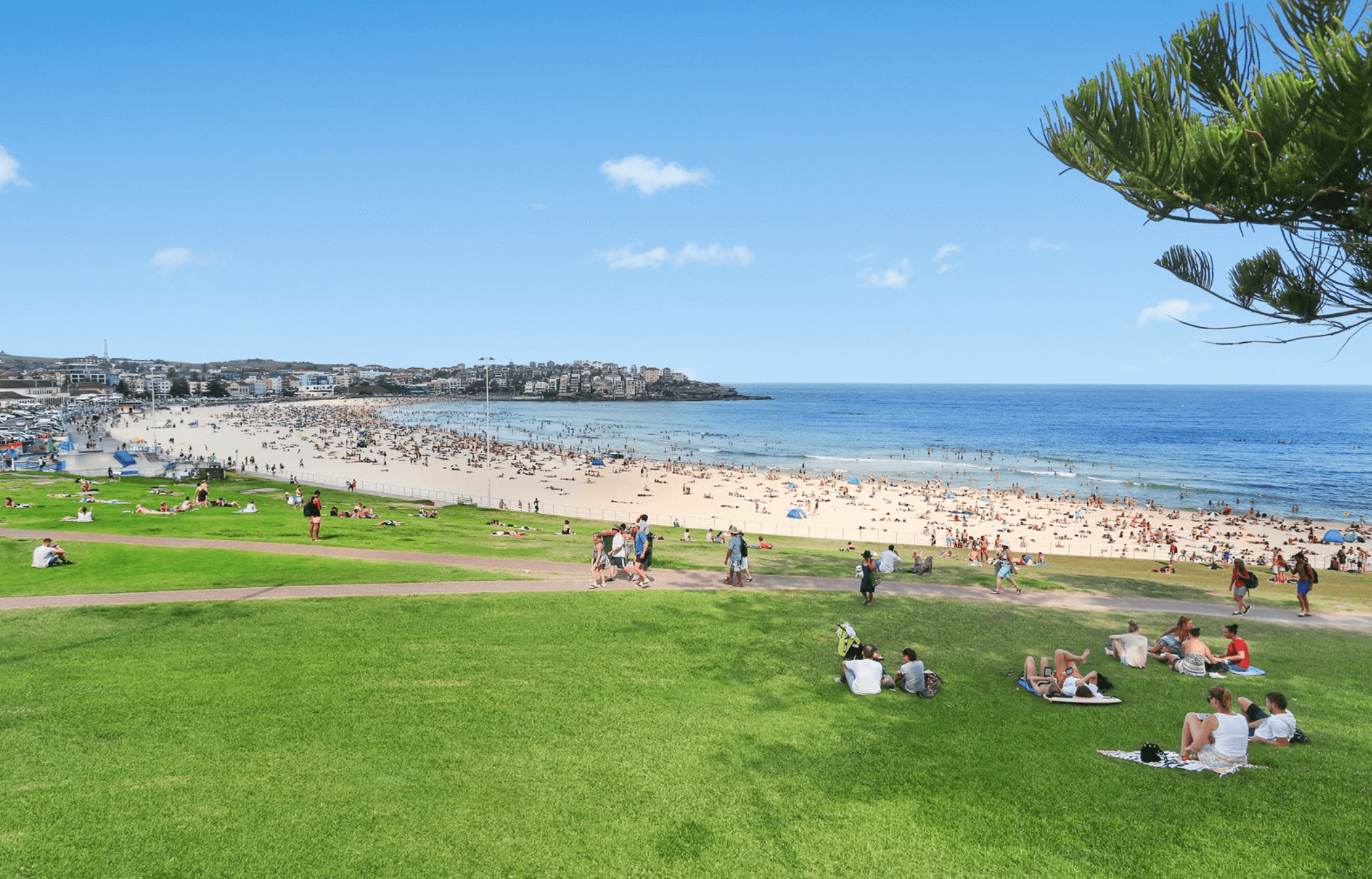 sydney lawn mowing services